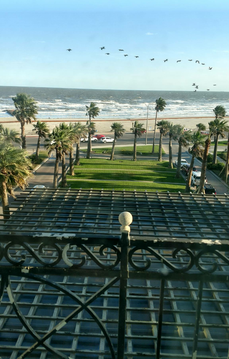 Why Galveston Is The Perfect Texas Vacation