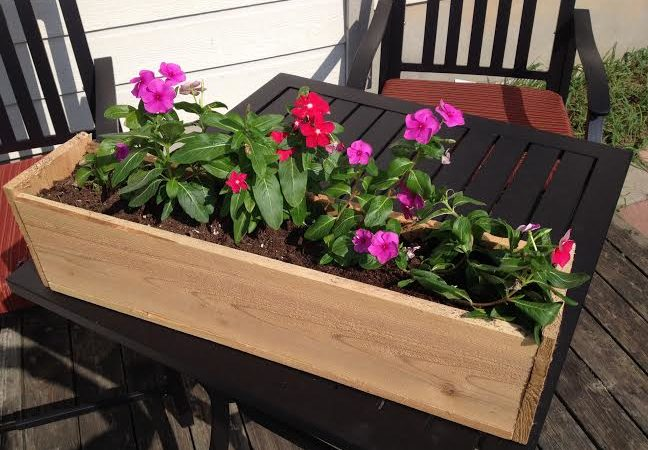 Summer Backyard Flower Box
