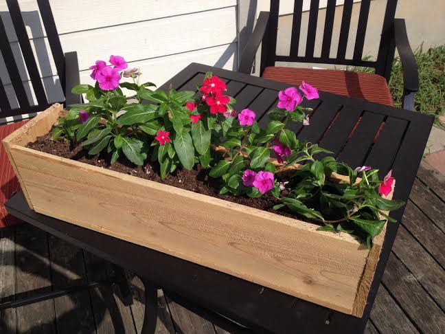 Summer Backyard Flower Box